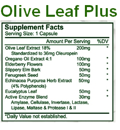 Enzyme Process Olive Leaf Plus