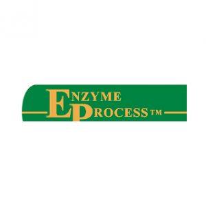 Enzyme Process